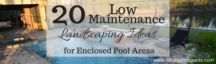 20 Low Maintenance Landscaping Ideas for Enclosed Pool Areas